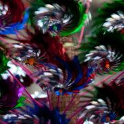 pinwheel-cropped-11x17-Edit